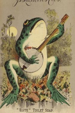 Frog Playing Banjo