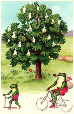 Frogs Passing Horse Chestnut