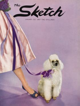 Front Cover Photograph Showing a Lady Posed with a Poodle