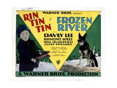https://imgc.allpostersimages.com/img/posters/frozen-river-davey-lee-rin-tin-tin-1929_u-L-Q12OQC30.jpg?artPerspective=n