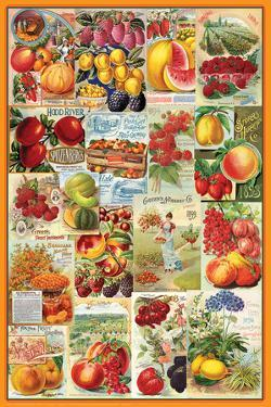 Fruits Seed Packet Collage