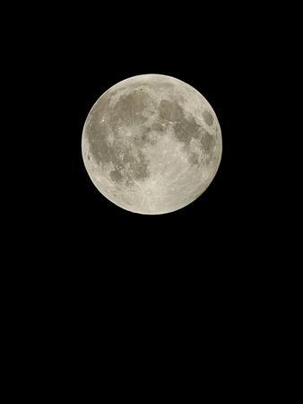 https://imgc.allpostersimages.com/img/posters/full-moon_u-L-PZHHKN0.jpg?artPerspective=n