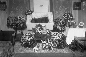 Funeral for Pet Bulldog