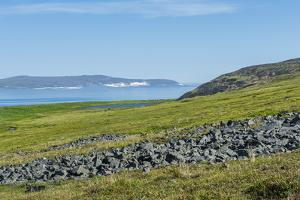 Ittygran Island, Chukotka, Russia, Eurasia by G and M Therin-Weise