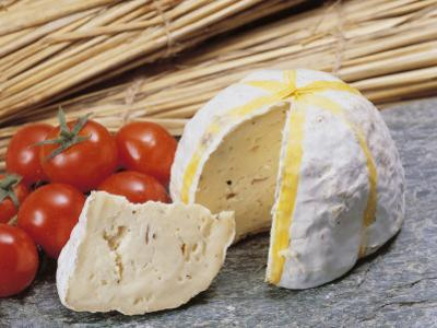 Close-Up of Cheese (Gaperon) and Tomatoes by G. Cigolini