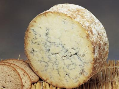 Close-Up of Cheese (Stilton) by G. Cigolini