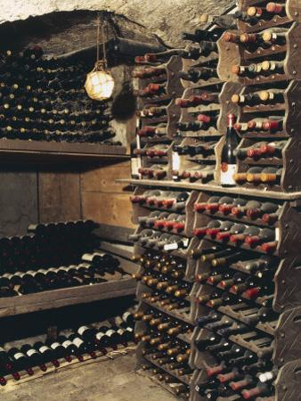 Wine Bottles on a Rack in a Wine Cellar by G. Cigolini