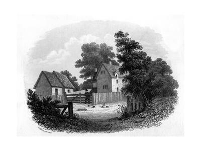 Bloomfield Early Home