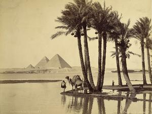 The Pyramids, 1860-69 by G. Lekegian