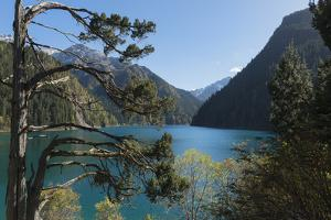 Long Lake, Jiuzhaigou National Park, UNESCO World Heritage Site, Sichuan Province, China, Asia by G & M Therin-Weise