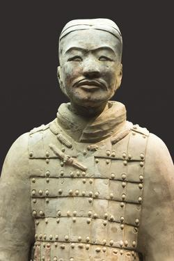 Museum of the Terracotta Warriors, Bust of a Cavalryman, Xian, Shaanxi Province, China, Asia by G & M Therin-Weise