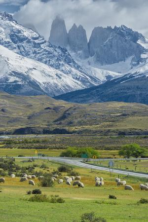 The Three Towers, Torres Del Paine National Park, Chilean Patagonia, Chile