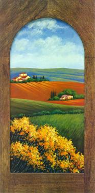 Summer Day in Umbria III by G. Pino