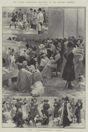 The Ladies' Coronation Dog-Show at the Botanic Gardens by G.S. Amato