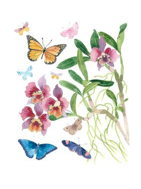 Butterflies and Orchids 1 by Gabby Malpas
