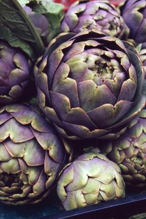 This is a Close-Up Shot of Fresh Artichokes in Rome's Market at Campo Dei'fiori.