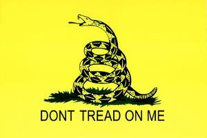 Gadsden Flag (Don't Tread On Me) Tea Party Historical