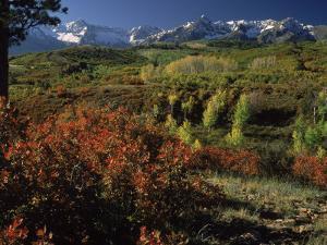 Sneffels Range in Fall, San Juan Mountains, CO by Gail Dohrmann