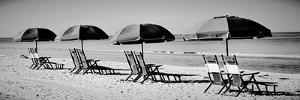 Beach Reunion by Gail Peck