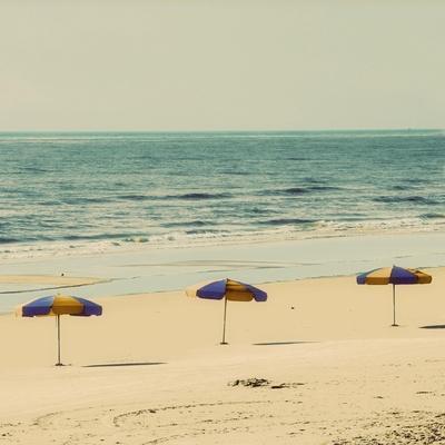 Beach Trip II