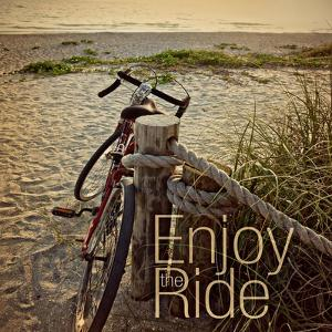 Enjoy the Ride by Gail Peck