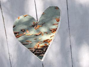 Heart Full of Love by Gail Peck