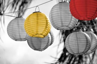 Lanterns by Gail Peck