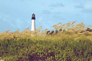 Lighthouse View by Gail Peck