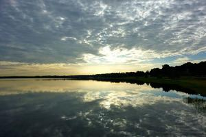 Reflections of the Sky by Gail Peck