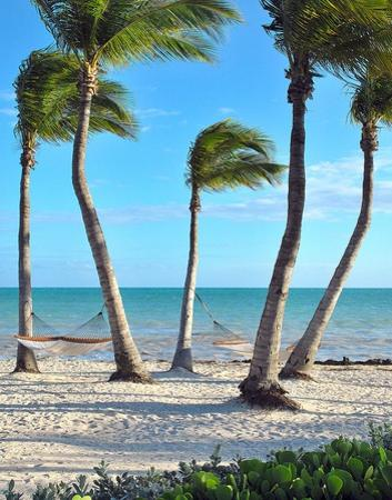 Shoreside Retreat by Gail Peck
