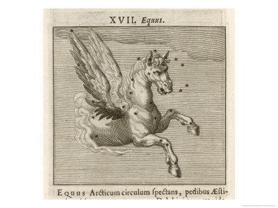 Equus the Horse
