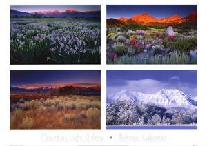 Four Seasons by Galen Rowell