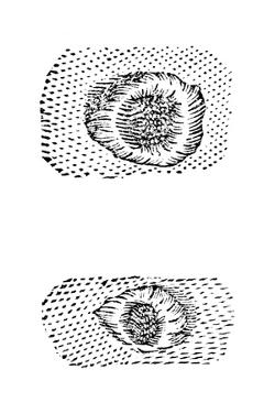 Galileo's Drawing of Lunar Craters, 1611 by Galileo Galilei