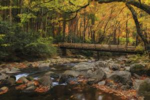 Greenbrier Bridge With Stream Watercolor by Galloimages Online