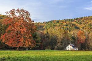 Little House In The Fall by Galloimages Online