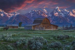 Mormon Row Barn Sunrise by Galloimages Online