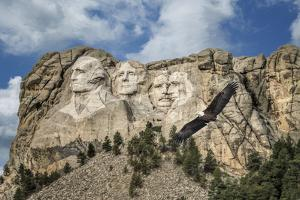 Mount Rushmore and Eagle by Galloimages Online