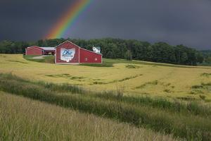 Ohio Farm Rainbow by Galloimages Online