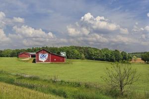Ohio Farm by Galloimages Online
