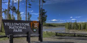 Yellowstone National Park Sign by Galloimages Online