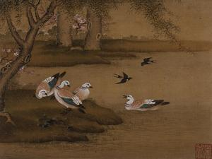 Ducks and Swallows. from an Album of Bird Paintings by Gao Qipei