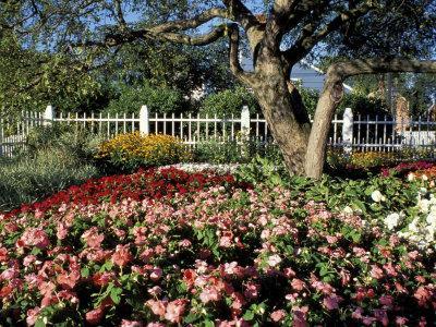 https://imgc.allpostersimages.com/img/posters/garden-at-prescott-park-new-hampshire-usa_u-L-P49UTB0.jpg?p=0