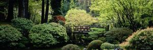 Garden, Japanese Garden, Washington Park, Portland, Oregon