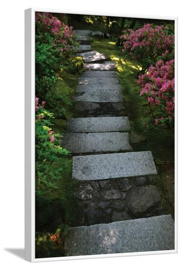 Garden Stairs I-Brian Moore-Framed Photographic Print