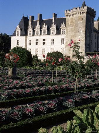 https://imgc.allpostersimages.com/img/posters/gardens-chateau-de-villandry-indre-et-loire-loire-valley-centre-france_u-L-P1TYFD0.jpg?p=0