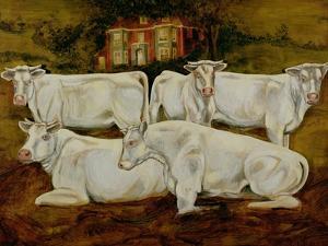 Charolais Bulls, Dippenhall, Farnham by Gareth Lloyd Ball