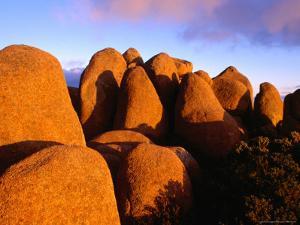 Dolerite Boulders at Mt. Wellington, Tasmania, Australia by Gareth McCormack