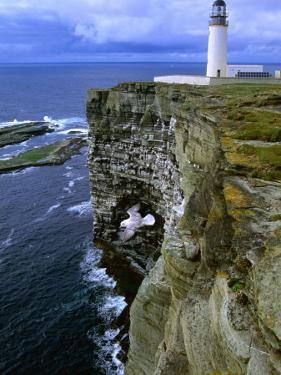 Lighthouse and Cliffs at Noup Head Rspb Reserve, Westray, Orkney Islands, Scotland by Gareth McCormack