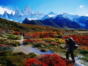 Trekkers Walking Through Autumnal Foliage Towards Monte Fitz Roy by Gareth McCormack