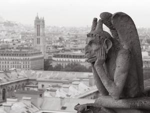 Gargoyle Statue at a Cathedral, Notre Dame, Paris, Ile-De-France, France